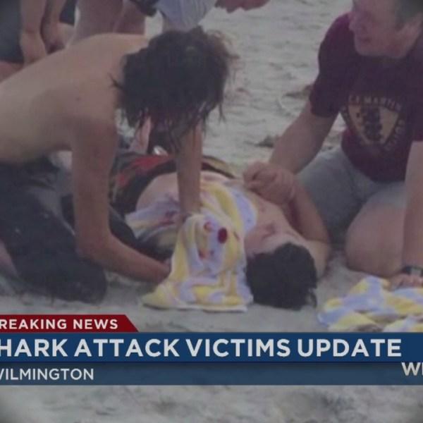 shark attack 2_35559