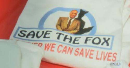 save the fox_48682