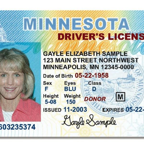 Sample driver's license_123183