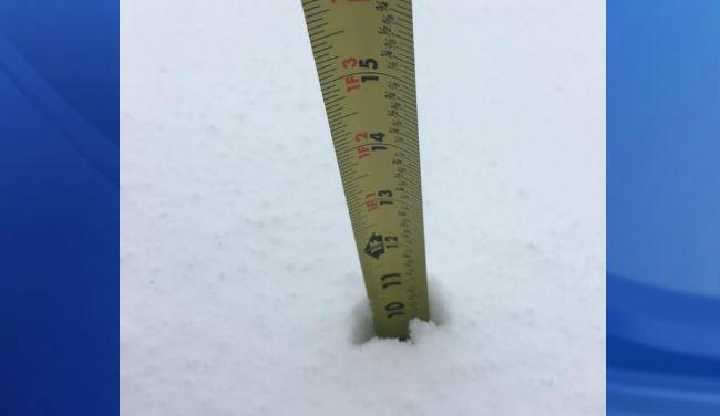 snowfall-totals-ruler_317780
