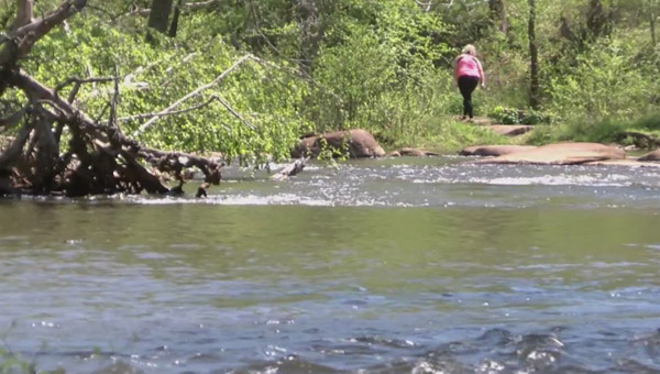 neuse river generic_383239