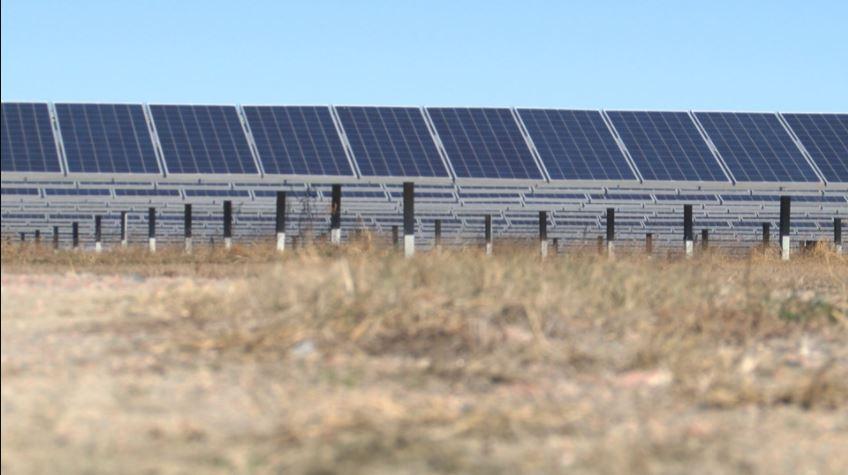solar farm wnct_565497