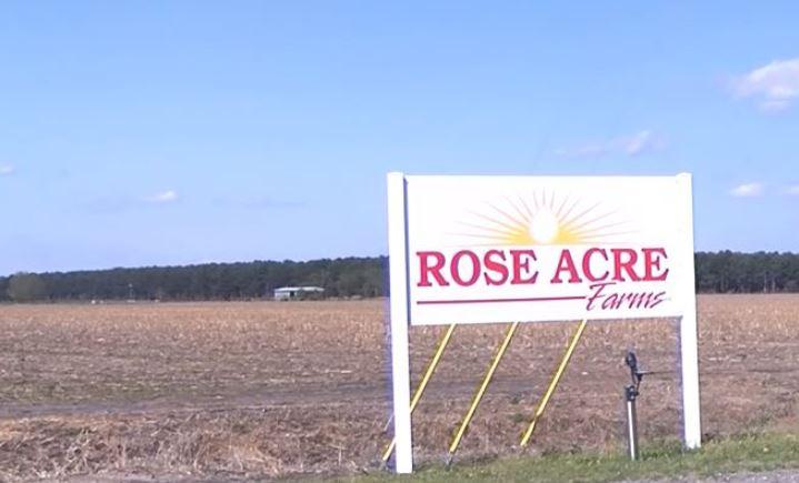 egg recall rose acres_1524357377358.JPG.jpg