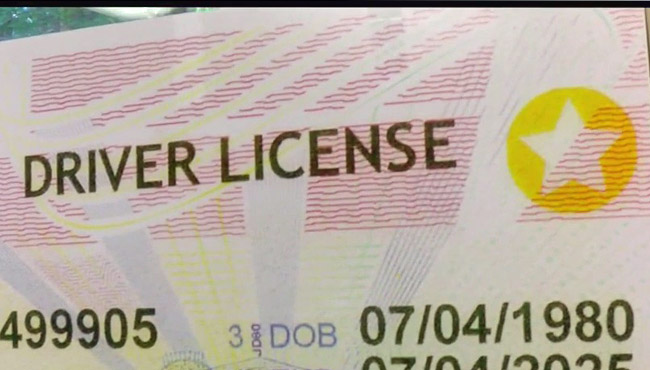 nc lost drivers license out of state