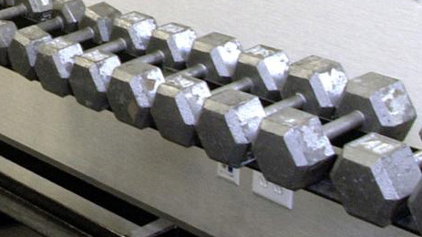 gym weights generic
