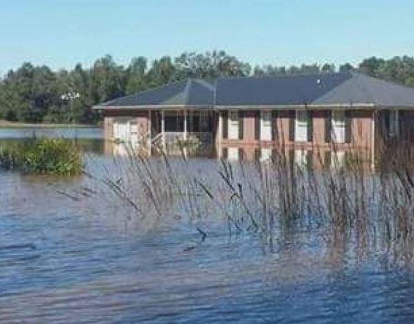 Pender flooded home WECT_1539049324169.JPG.jpg
