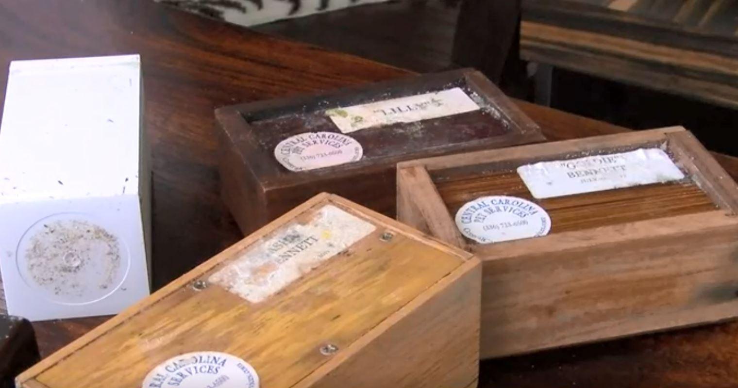 Cremated pet remain boxes_1547470350888.JPG.jpg