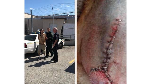 dog abused Brevard Co SO WISH_1551215005492.jpg.jpg