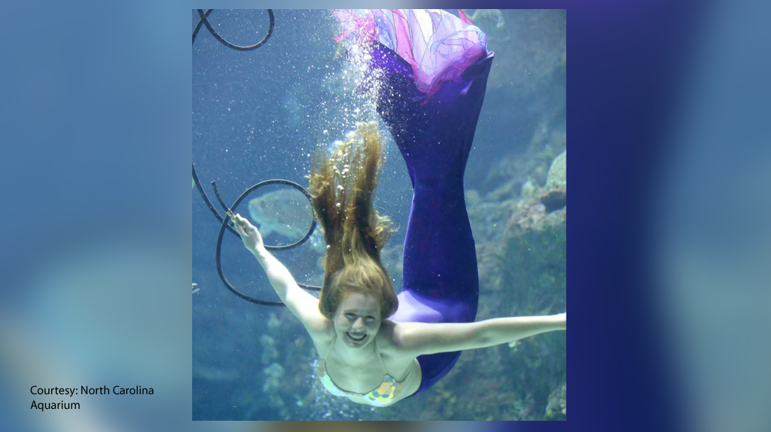 mermaid-nc-aqarium_1550860566986.jpg