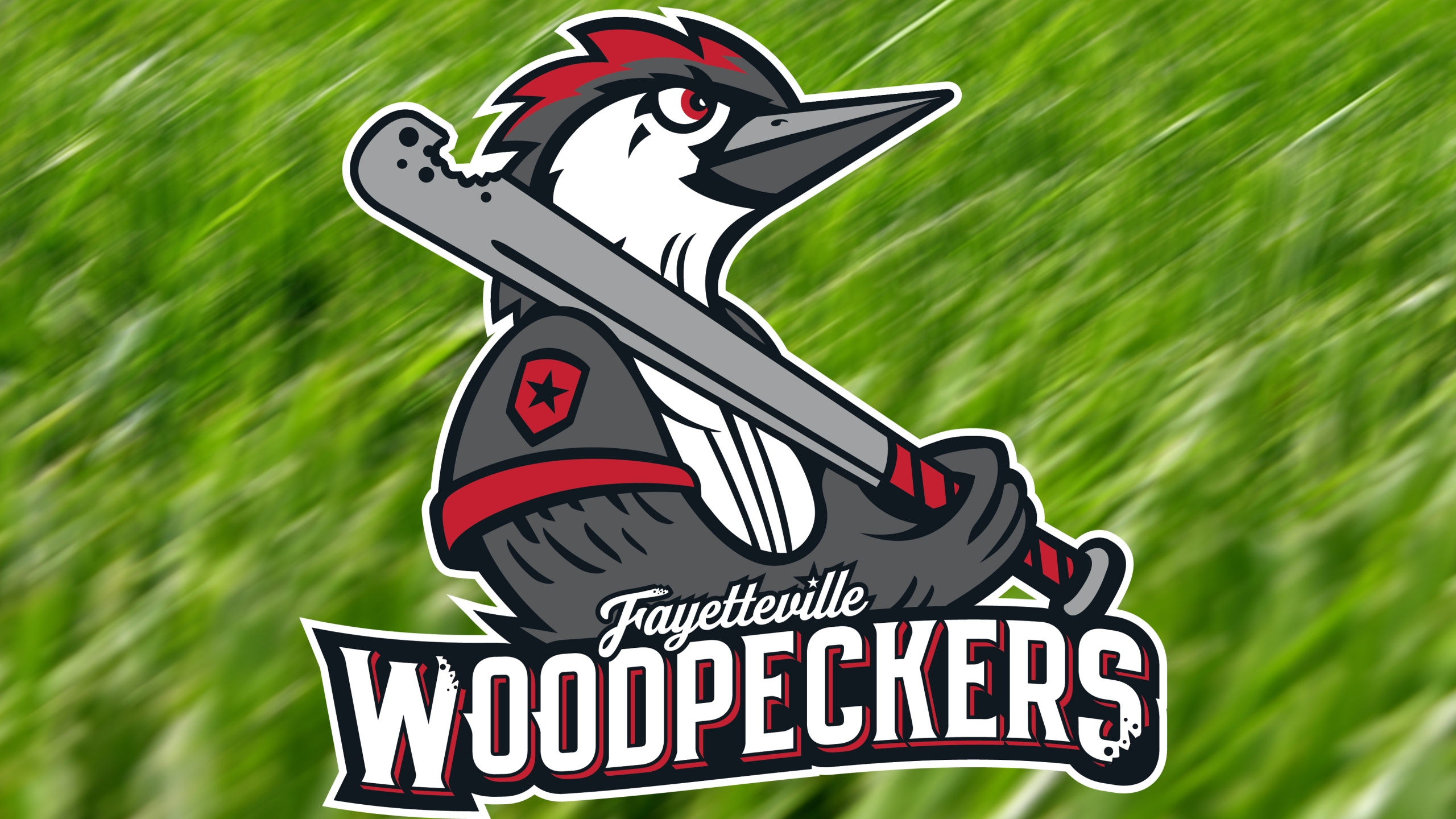 Woodpeckers generic