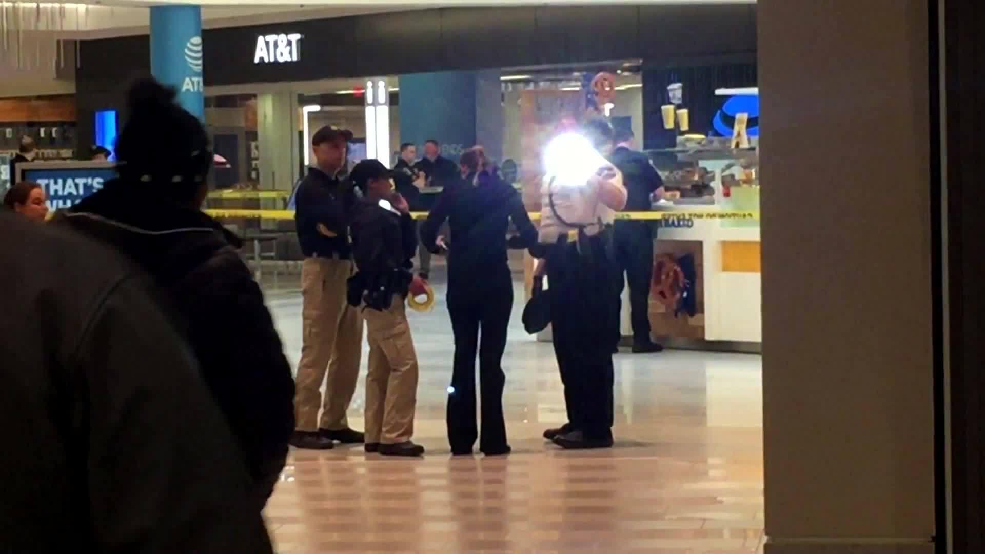 VIDEO__Mall_of_America_child_attack_susp_6_20190415230219