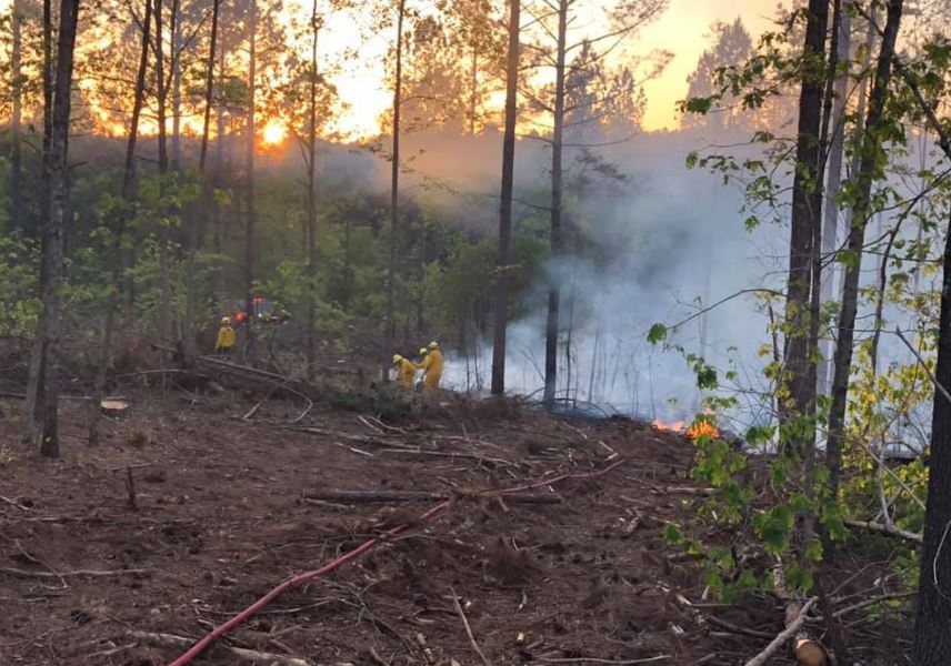 lovelady wildfire 1_1556578196020.JPG.jpg