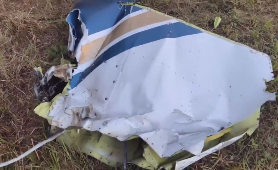 The engine was struggling, then it nosedived': 911 calls shed light