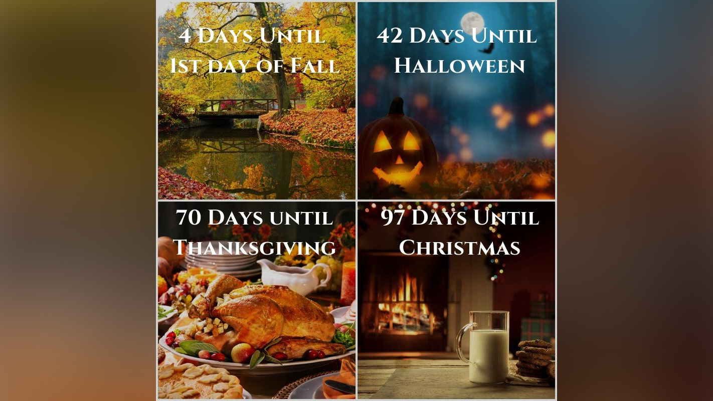How Many Days Until Christmas Meme.Pumpkins Fall Colors And Christmas Right Around The