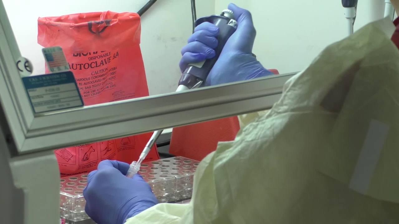 North Carolina reports more than 400 coronavirus cases 1